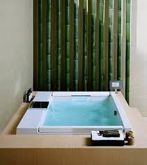 interior designs for bathroom  interior design for bathrooms  decorating ideas in interior design fo