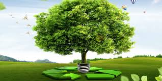 essays world s largest collection of essays published by experts essay on the environmental management 585 words