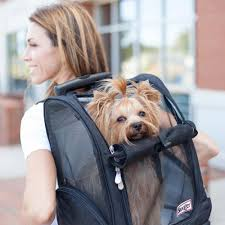 Roll Around Travel <b>Dog Carrier Backpack</b> 4-in-1