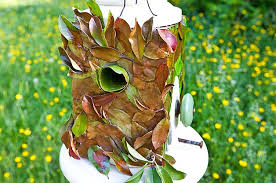 Leafy <b>DIY Birdhouse</b> - Birds and Blooms