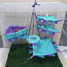 HOT! Sky Blue 5 Piece Cute Sugar Glider Hamster ... - Amazon.com
