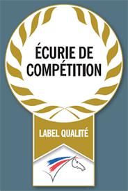 """Résultat de recherche d'images pour """"logo ecurie competition ffe"""""""