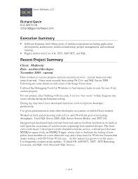 how to write a resume summary that grabs attention best business examples of a summary for a resume professional examples of how to intended for how to