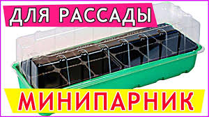 <b>Мини парник Для Рассады</b> НА ПОДОКОННИКЕ   ОТЗЫВ! - YouTube