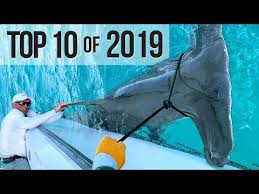 Top 10 Best <b>Fishing</b> Moments from 2019 - YouTube