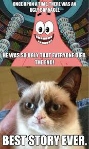 Image result for meme kittens funny