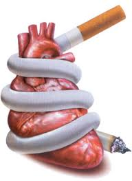 Image result for rokok