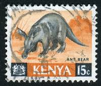 Image result for An aardvark/Ant Bear can eat 50,000 termites in one sitting.