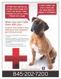 vetmedics veterinarian in fishkill new york pet sitting services