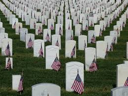 Image result for military cemetery with flags