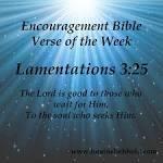 Lamentations 325