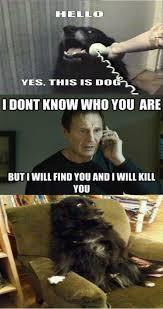 Funniest-Memes-ever-001.jpg via Relatably.com