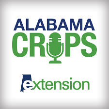 Alabama Crops Report