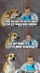 Dad Joke Dog Memes - Imgflip via Relatably.com
