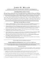 marketing director sample resume   cmo marketing sample resume    marketing director sample resume   cmo marketing sample resume   executive resume writer