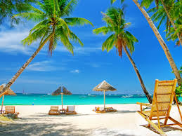 Image result for paradise!
