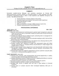 Resume Template    Resume Technical Skills Examples Resume Writing     List Computer Skills On Resume Example   computer skills list for resume