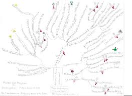 page of between media literature bootcamp tree map murder and hem in shakespeare s titus andronicus