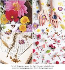mihuage resin dried flower household decorative diy bouquet gem grass one bundles fresh keeping nordic sense
