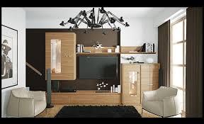 Living Room Cabinets Designs Living Room Handsome Fascinating Modern Living Room Cabinet Ideas