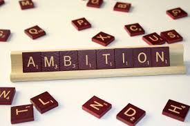 essay on the ambition in life