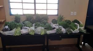 No presídio de Ivinhema, horta cultivada por internos garante doação de verduras a seus familiares - ArapuaNews - Notícias de Três Lagoas, Mato Grosso do Sul, Brasil e região