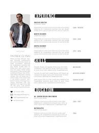 professional resume format 2016 best format for resumes