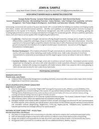 Resume Examples Managing Director     BNLZ Resume Examples Managing Director Free Resume Templates