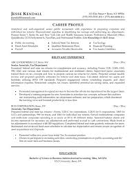 best sales resume 2016 resume samples best