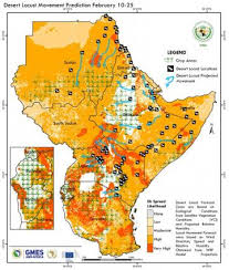 Heavy rains contribute to <b>desert</b> locust crisis in East Africa | World ...