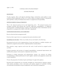 Resume Example For Job Malaysia  resume design sample resume     Free Professional Resume Template