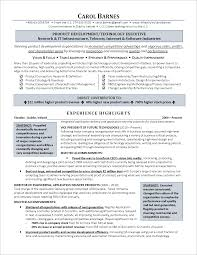 executive resume information technology page 1 png executive level information technology resume