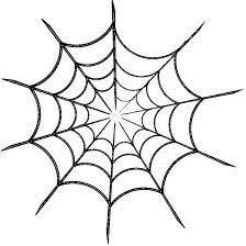 Resultado de imagen de tela de araña