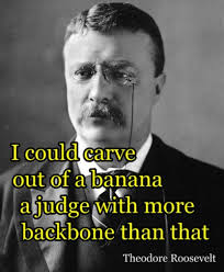 Greatest eleven distinguished quotes by theodore roosevelt pic Hindi via Relatably.com