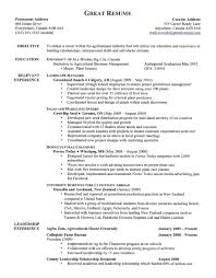 accounting manager resume examples experience resumes s accounting manager resume examples experience resumes financial manager resume template finance director assistant financial manager resume