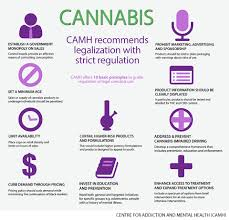 marijuana should be legalized and regulated camh ca camh cannabis principles