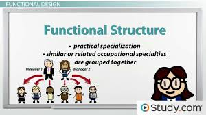 types of traditional organizational designs simple functional types of traditional organizational designs simple functional divisional designs video lesson transcript study com