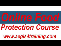 what is the food protection   virtual online referenceonline food protection course