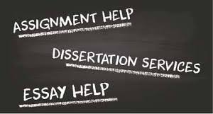 College Essay Assignment How To Write Essays And Assignments Pdf     Essay Writing Help Online