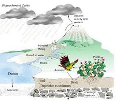 Ringkasan Materi Pengertian Biosfer Geografi