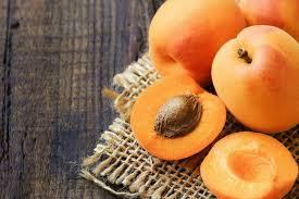 Αποτέλεσμα εικόνας για apricot kernel