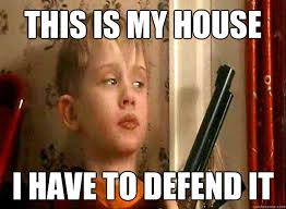 Memes Vault Funny Memes About Being Home Alone via Relatably.com