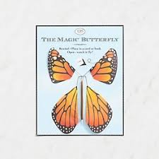 Flying <b>Magic Butterfly</b> | Paper Source