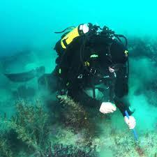 Six underwater <b>volcanoes</b> found hiding in plain sight