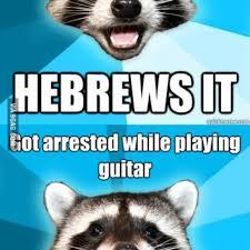 Lame-Pun-Raccoon-Meme-Collection_408x408.jpg via Relatably.com