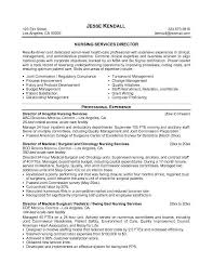 resume examples  nursing resume objective samples  nursing resume        resume examples  nursing resume objective samples with professional experience as nursing director  nursing resume