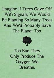 environmental_quotes_free_pictures_3083150875.jpg via Relatably.com