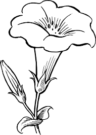 flowers black and white drawing clipart best drawings designer office supplies design my office art drawing office