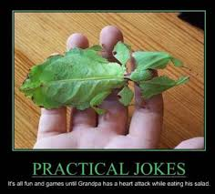 practical-jokes-funny-demotivational-posters-memes-photos ... via Relatably.com