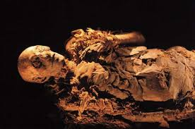 Photograph Using DNA from a tooth  Egyptian authorities identified a mummy as that of